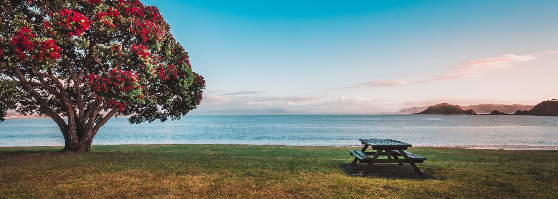 Bay of Island, Neuseeland