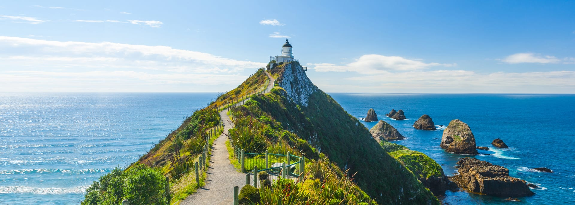 Nugget Point, Neuseeland