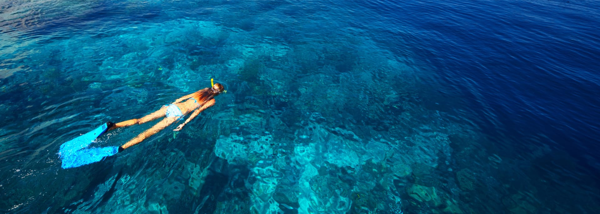 Young woman in swimsuit snorkeling in blue and transparent tropical Seychelles