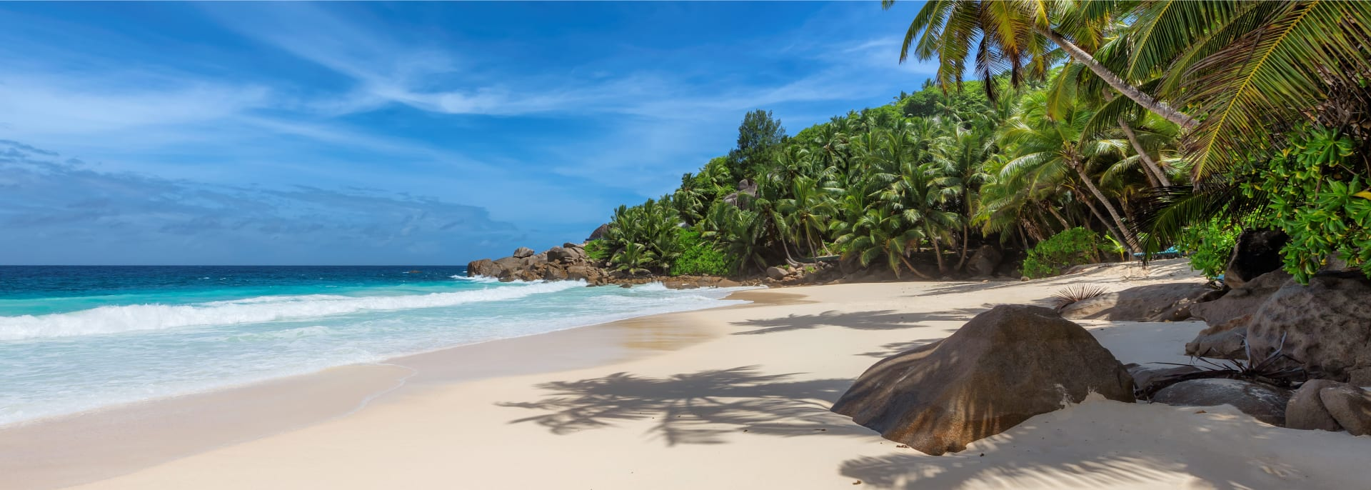Palm trees on white sandy beach and turquoise sea in paradise island, Seychelles