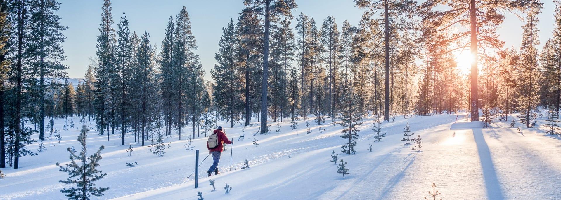 Langlauf, Schweden