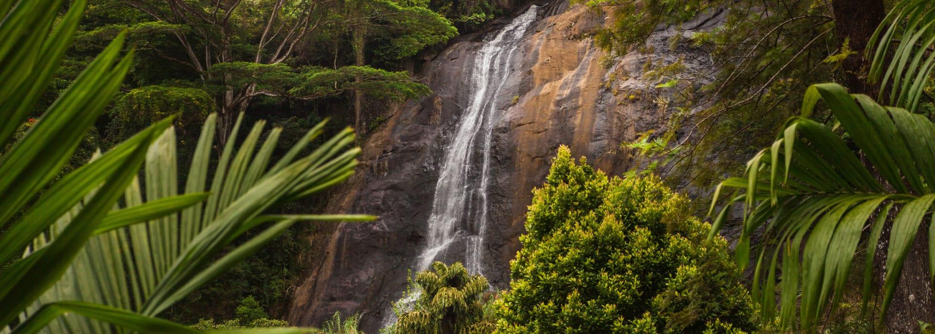 Sinharaja, Sri Lanka