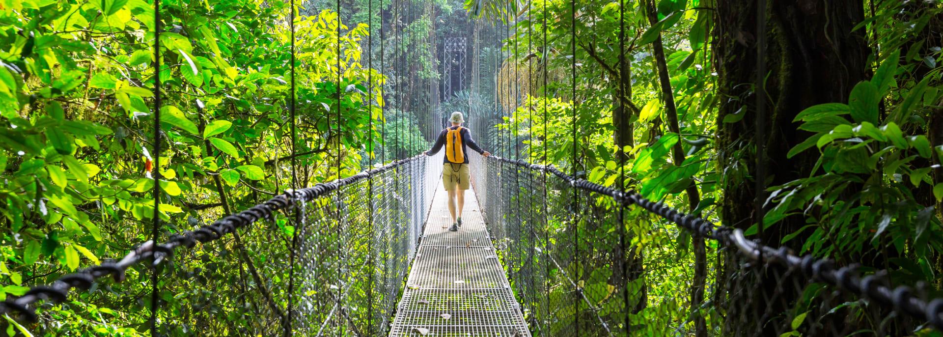 Wandern im grünen tropischen Dschungel, Costa Rica