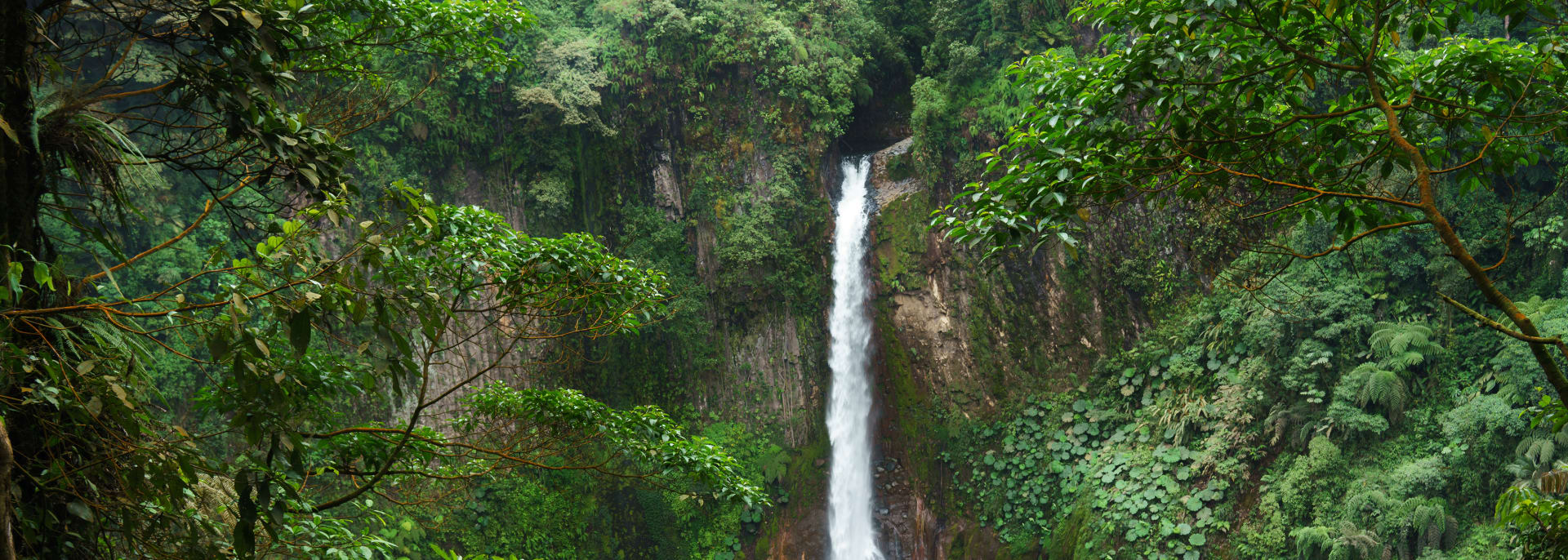 Alajuela & Bajos del Toro, Costa Rica