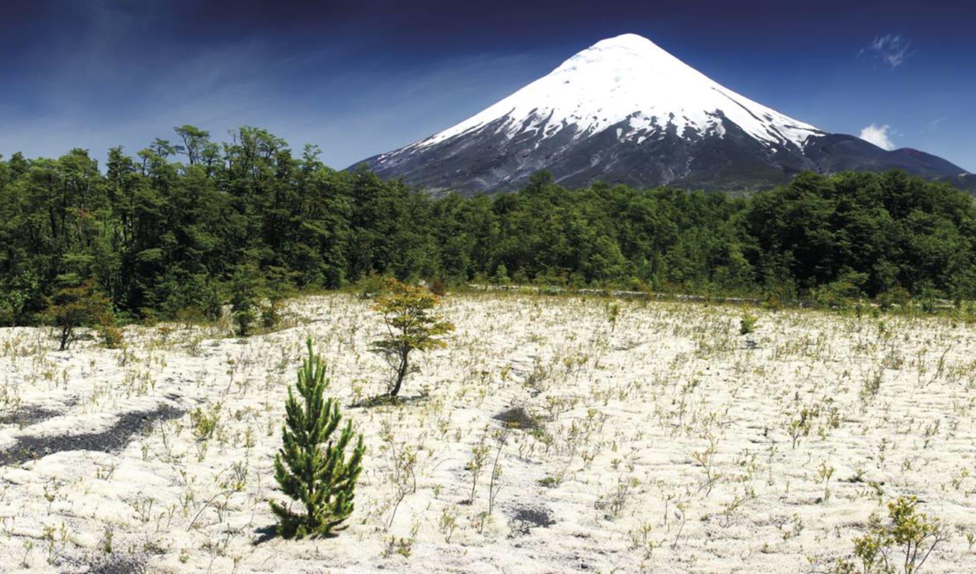 Zubucherreise Seengebiet ab Puerto Montt: Osorno Vulkan