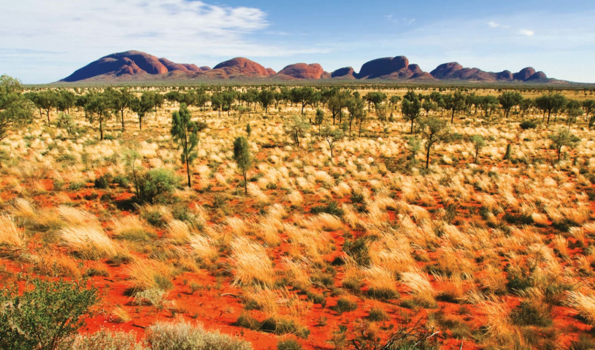 Rock 'n' Canyon ab Alice Springs: Kata Tjuta