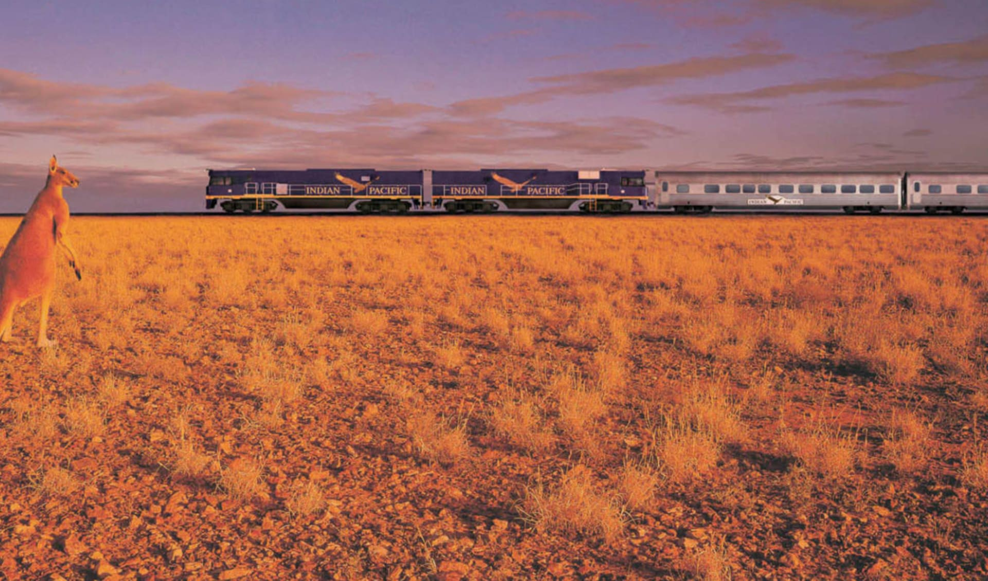 Indian Pacific von Perth nach Sydney: Australien - Bahnreisen - Indian Pacific mit Känguruh