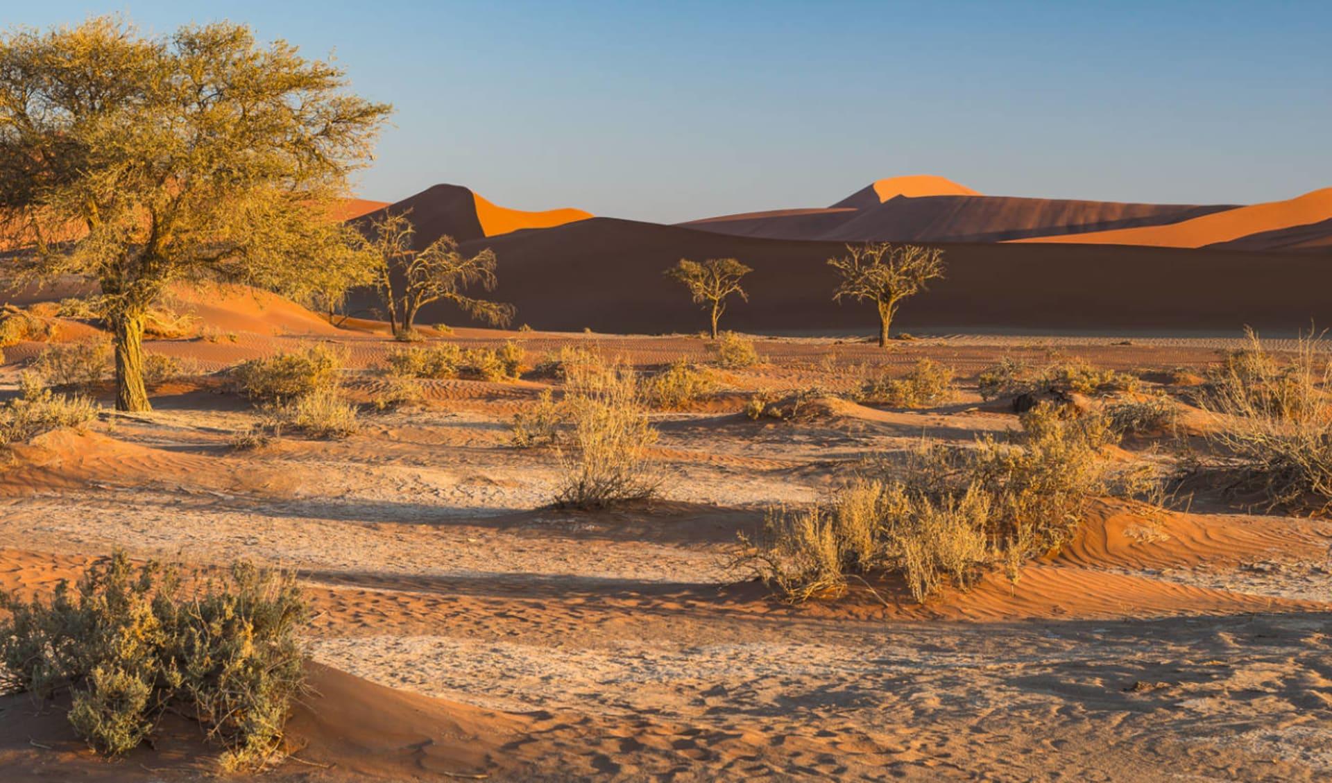 Namibia Klassiker 13 Tage ab Windhoek Stadt: Sossusvlei
