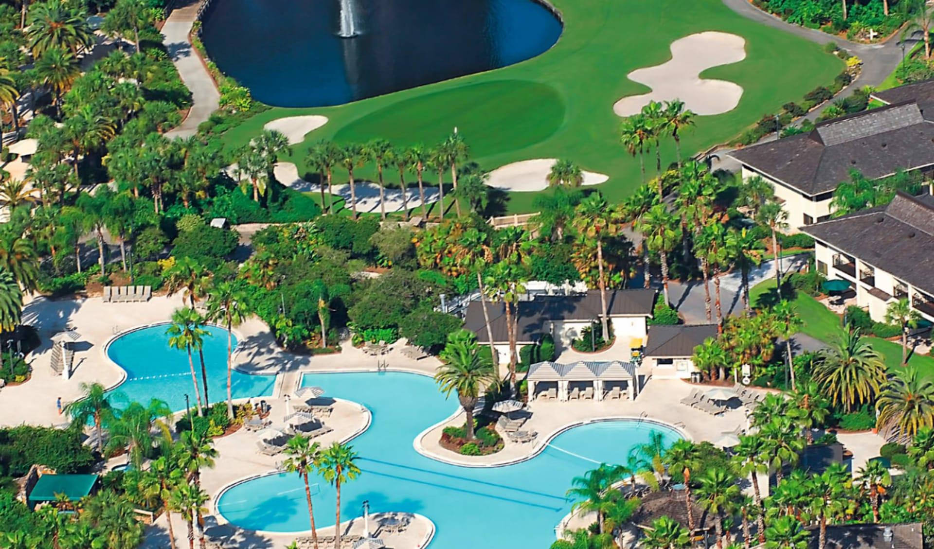 Saddlebrook Resort in Tampa: Saddlebrook Resort - Vogelperspektive