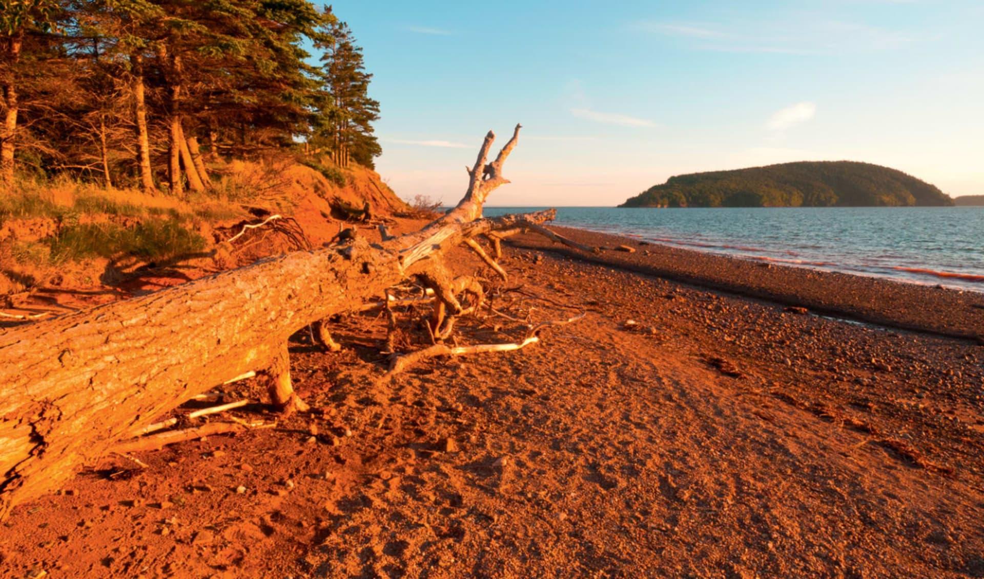 Strände, Inseln Lobster und Elche ab Halifax: Ostkanada Nova Scotia - Küstenabschnitt