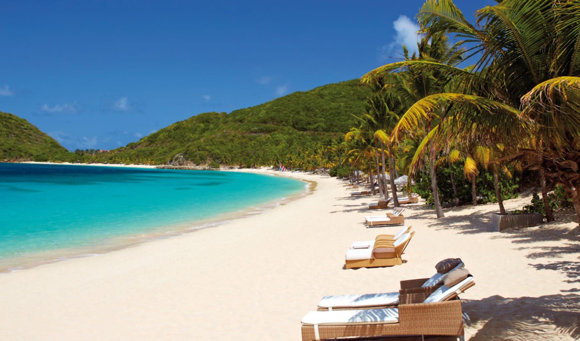 Peter Island Resort & Spa: natur peter island resort strand palmen