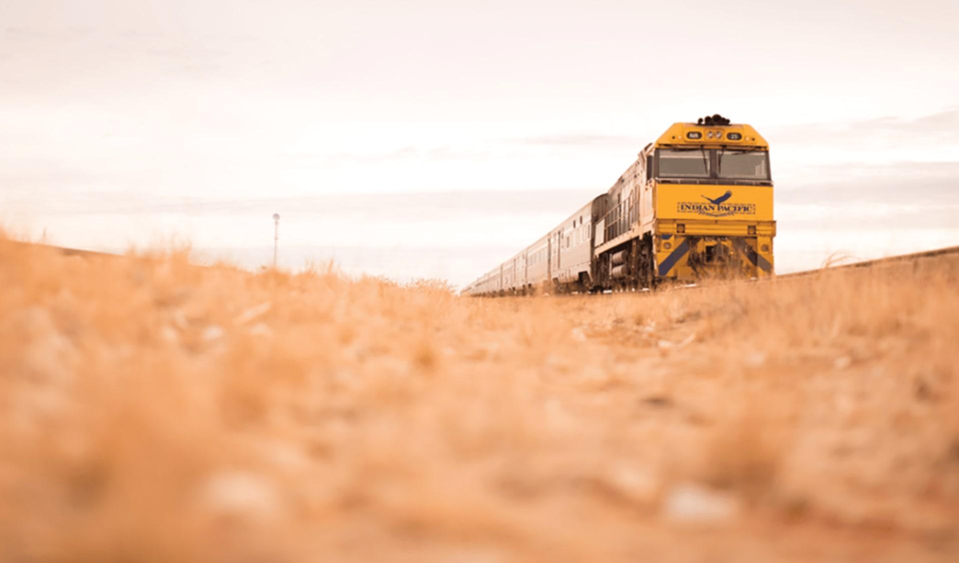 Indian Pacific von Sydney nach Perth: Australien - Bahnreisen - Indian Pacific auf Grasfläche 2018