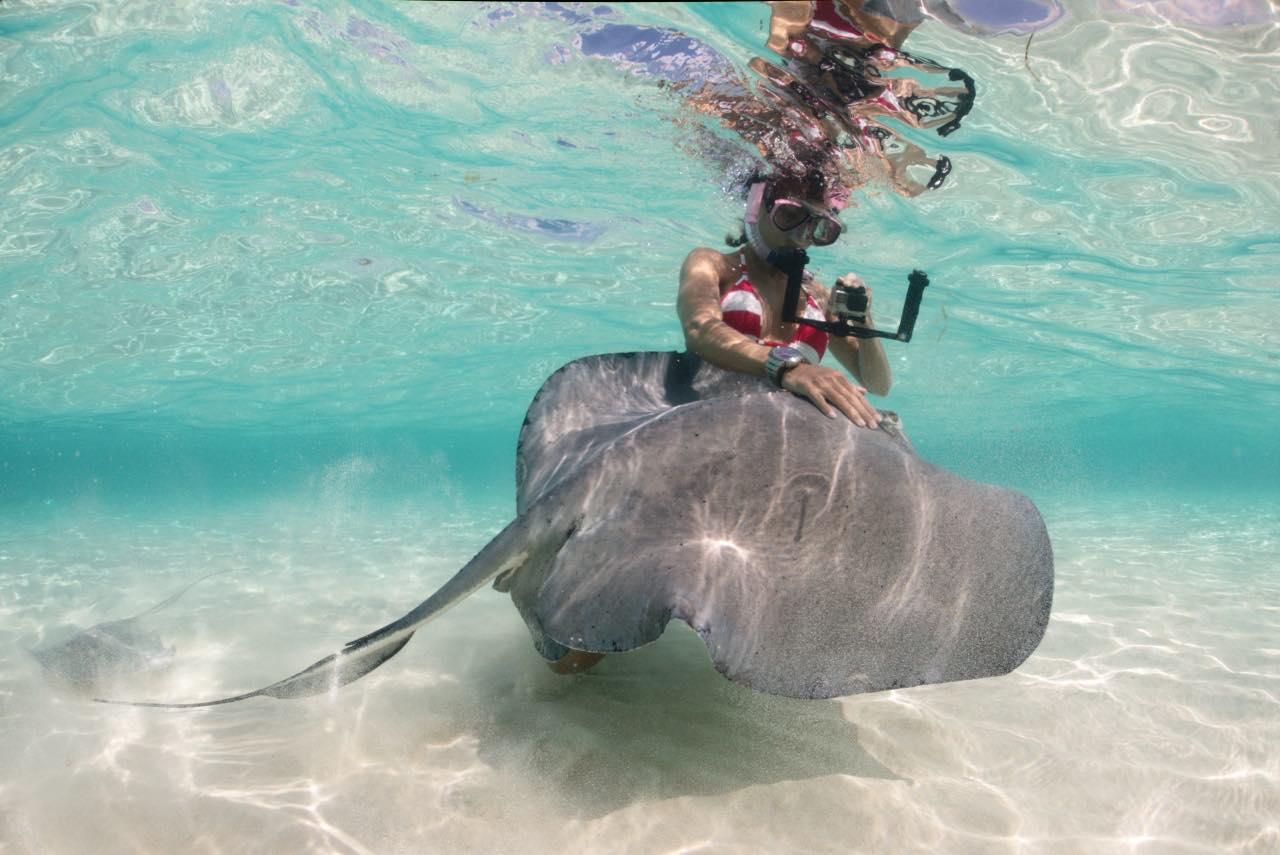 Huck filming a sting ray with her GoPro