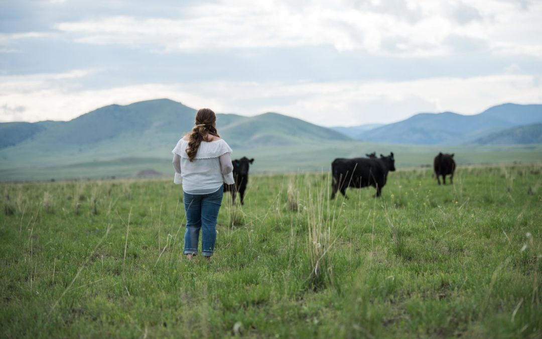 The Secret to Digital Marketing in the Ag Industry
