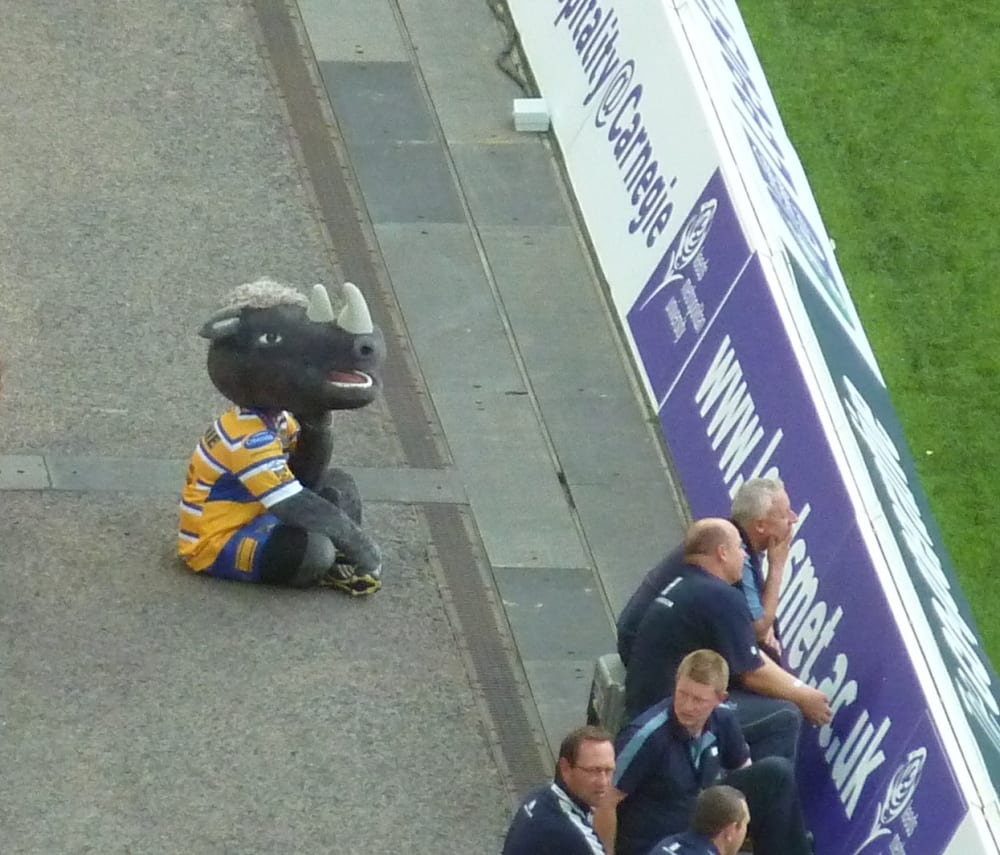 This picture of Ronnie the Rhino sums up how everyone was feeling