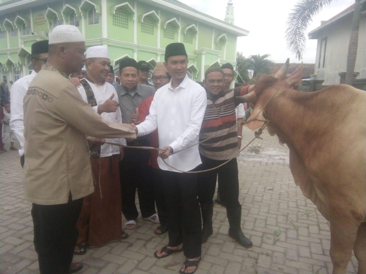 Idul Adha 1439 H, Masjid Al Muhajirin Potong Tujuh Sapi Dan Sebelas Kambing