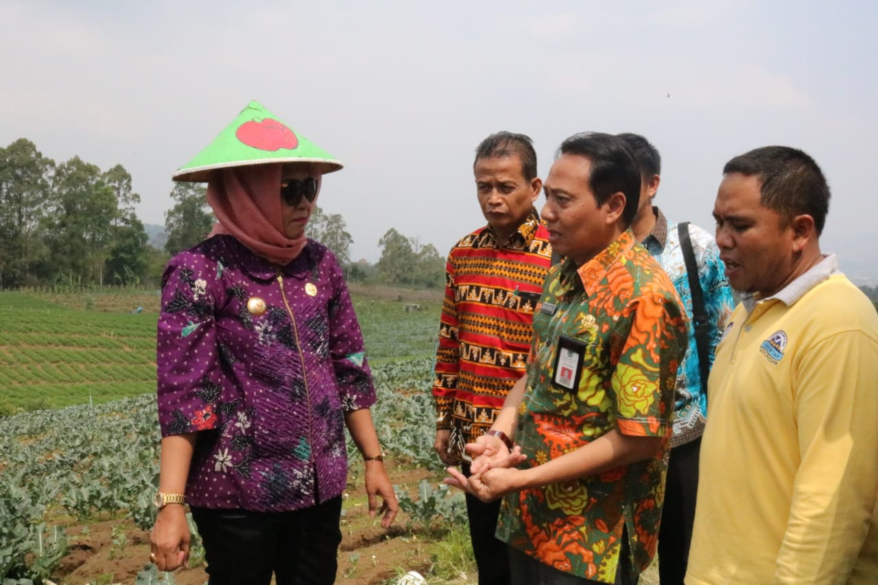 Hasil Kunker Bupati Winarti Berharap Bisa di Kembangkan di Tulangbawang