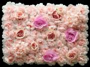 Rosa vegg Blomhild
