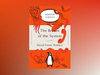 The Broom of the System av David Foster Wallace