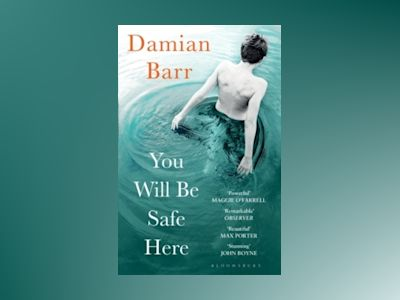You Will Be Safe Here av Damian Barr