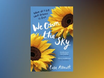 We Own the Sky av Luke Allnutt