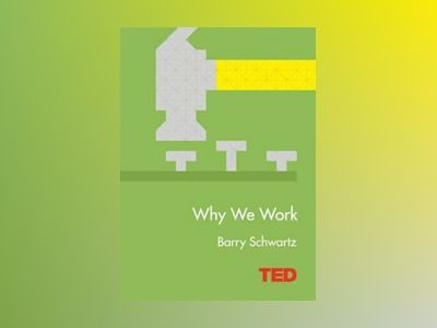 Why we work av Barry Schwartz
