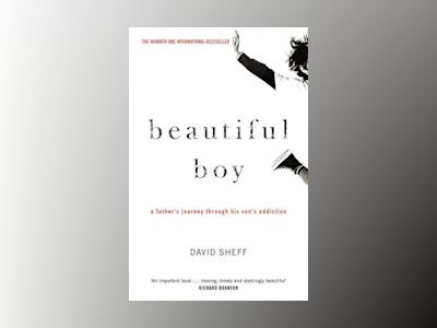 Beautiful Boy av David Sheff