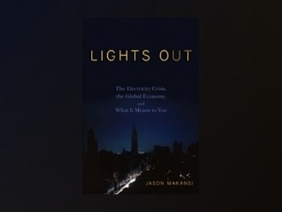Lights Out: The Electricity Crisis, the Global Economy, and What It Means T av Jason Makansi