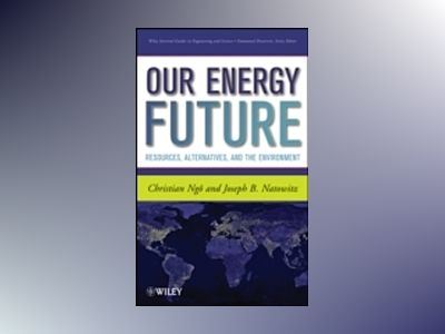 Our Energy Future: Resources, Alternatives and the Environment av Christian Ngo