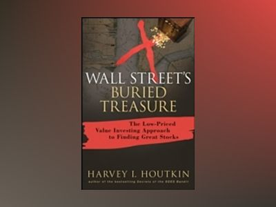 Wall Street's Buried Treasure: The Low-Priced Value Investing Approach to F av Harvey Houtkin