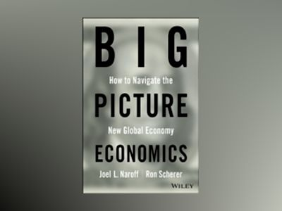 Big Picture Economics av Naroff