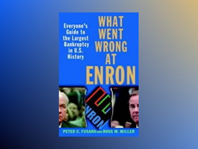 What Went Wrong at Enron: Everyone's Guide to the Largest Bankruptcy in U.S av Peter C. Fusaro