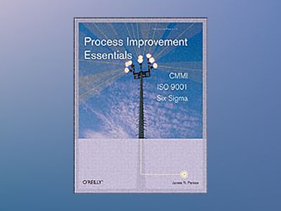 Process Improvement Essentials av Persse