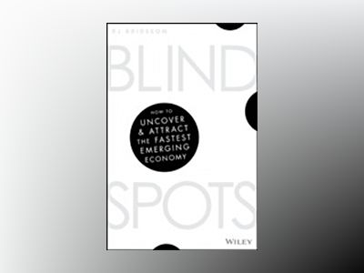 Blind Spots: How to uncover and attract the fastest emerging economy av RJ Brideson