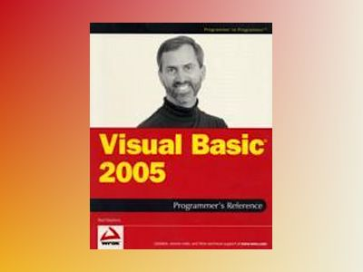 Visual Basic 2005 Programmer's Reference av Rod Stephens