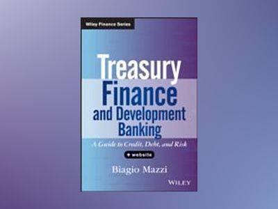 Treasury Finance and Development Banking: A Guide to Credit, Debt, and Risk av Biagio Mazzi