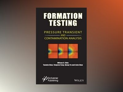Formation Testing: Pressure Transient and Contamination Analysis av Wilson C. Chin