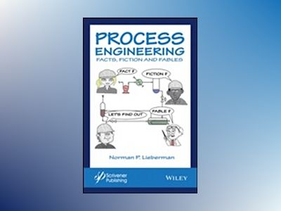 Process Engineering Beginner's Guide av Norman P. Lieberman