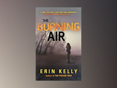 The Burning Air av Erin Kelly