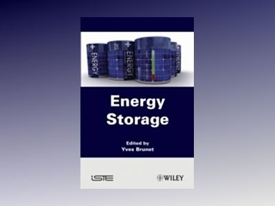 Energy Storage av Yves Brunet