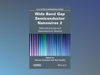 Wide Band Gap Semiconductor Nanowires for Optical Devices av Vincent Consonni