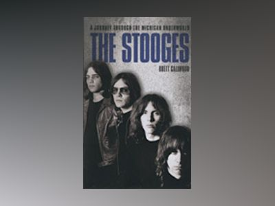 Stooges : a journey through the michigan underworld av Brett Callwood