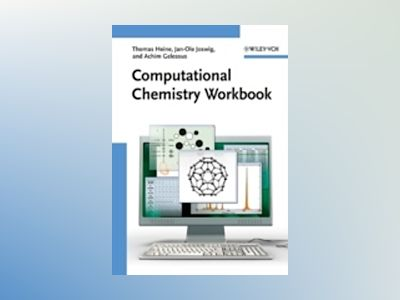 Computational Chemistry Workbook: Learning Through Examples av Thomas Heine