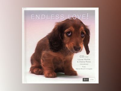 Endless love av CD-presentbok
