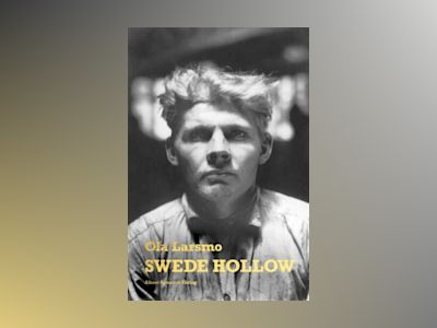 Swede Hollow av Ola Larsmo