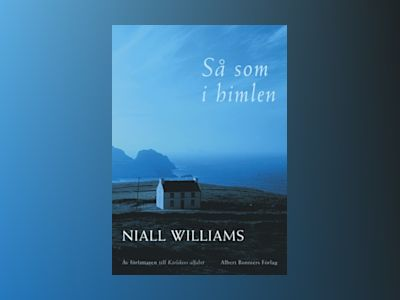 Så som i himlen av Niall Williams