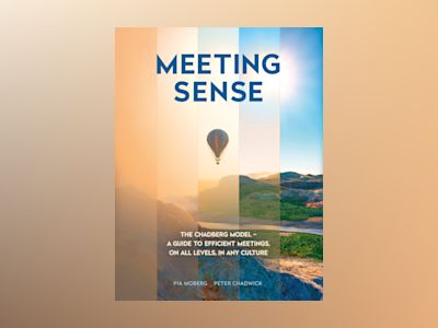 Meeting sense : the Chadberg Model - a guide to efficient meetings, on all levels, in any culture av Pia Moberg