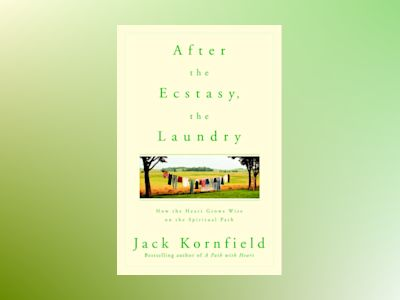 After the Ecstasy, the Laundry av Jack Kornfield