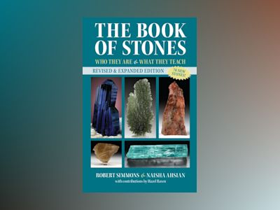 Book of stones, revised edition av Naisha Ahsian