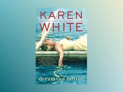 Dreams of Falling av Karen White